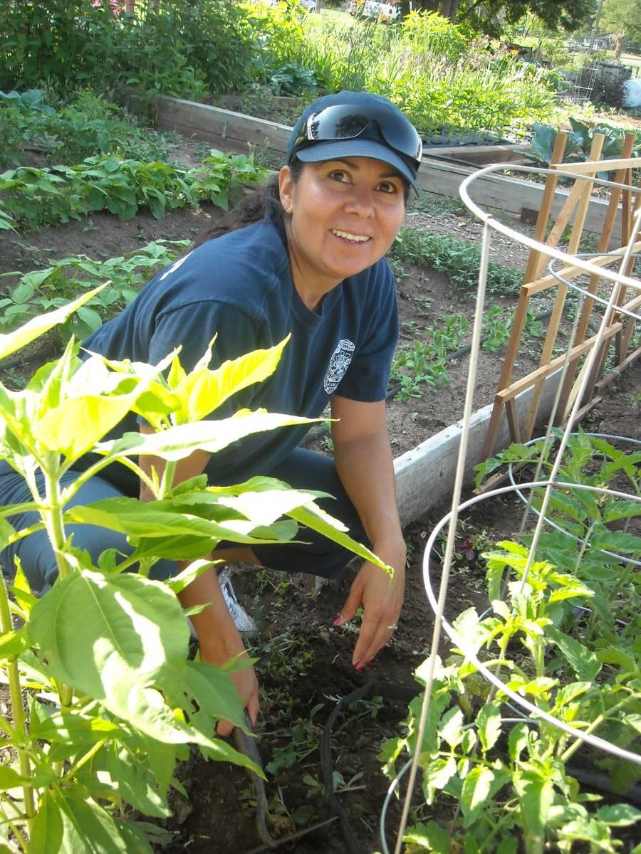 Why Do We Need Community Gardens?
