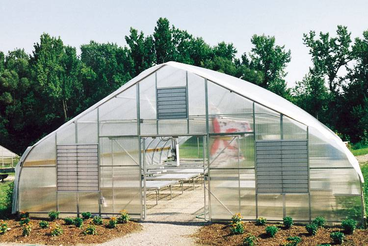 we want to expand into a 34x48 noreaster rimol greenhouse this would triple our potential production giving us secure space to grow for years to come - Rimol Greenhouse Of Photos